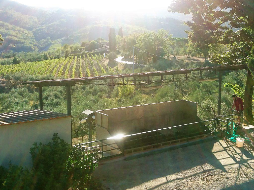 wijn-maken-terre-di-melazzano
